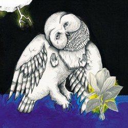 Songs: Ohia – Magnolia Electric Co.