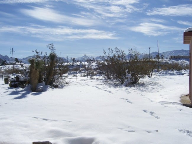 joshuatree_snow