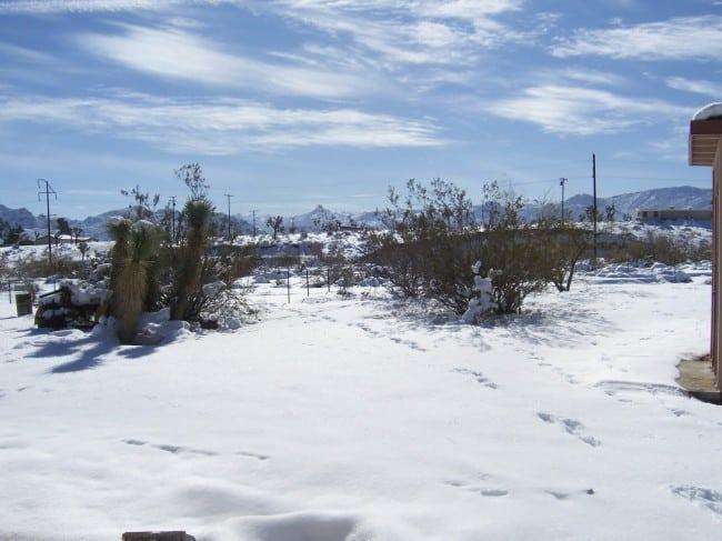 joshuatree_snow