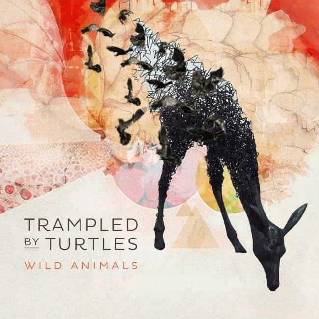 Trampled By Turtles – Wild Animals