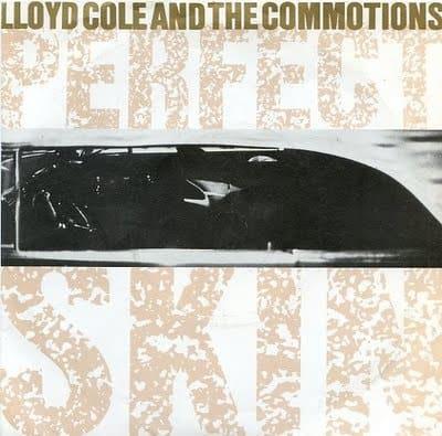 lloyd cole perfect-skin
